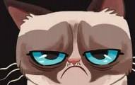 grumpycatfound-pv