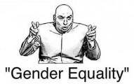 gendereq-pv