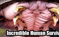 IncredibleHumanSurvivalStories-pv