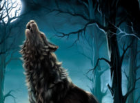 can a full moon make you go crazy